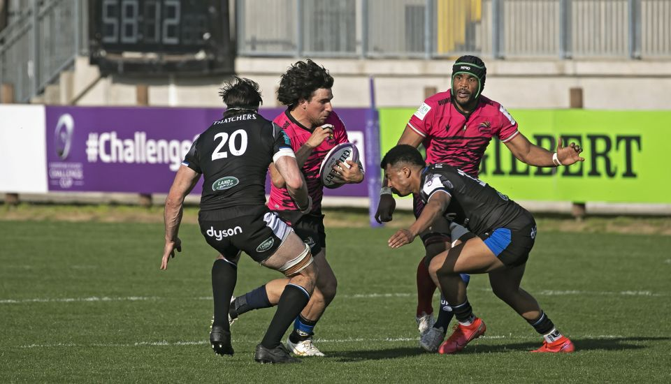 zebre rugby challenge cup gironi
